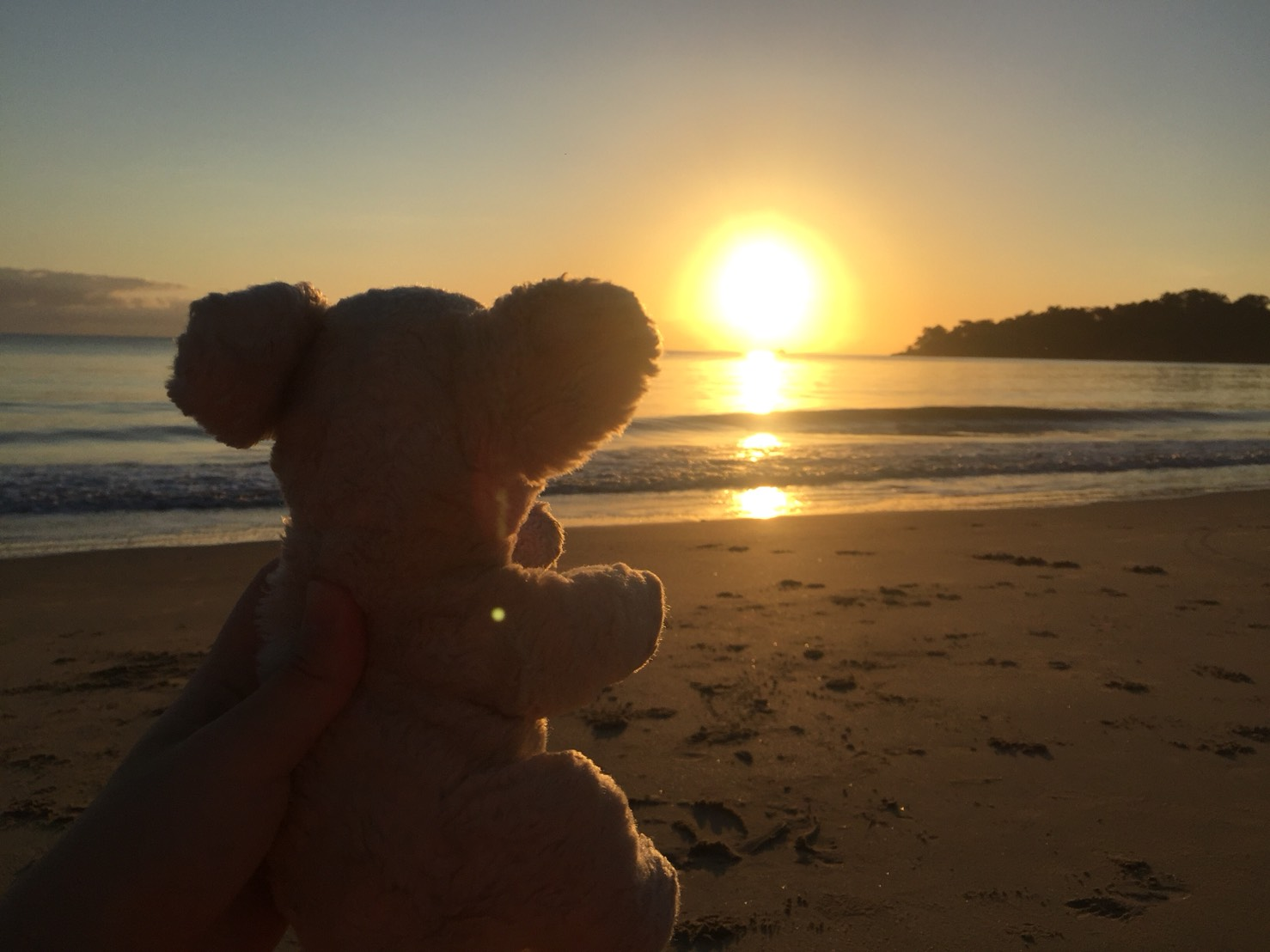 オーストラリアの夕日